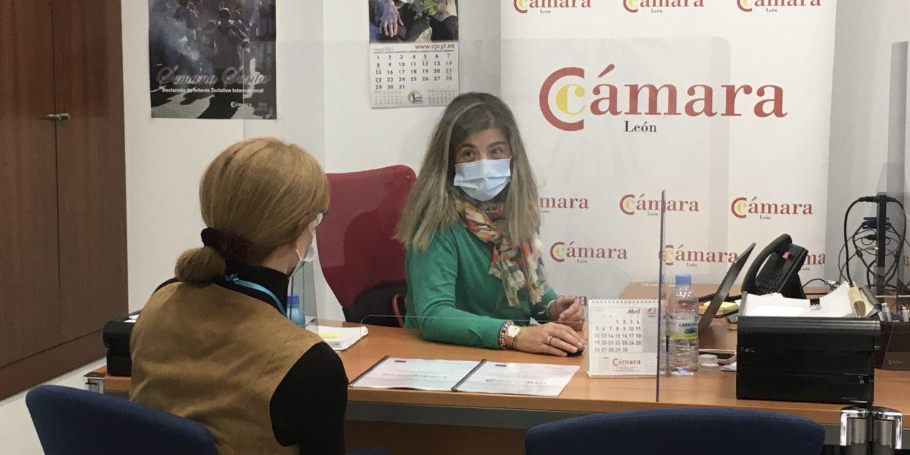LA CÁMARA DE LEÓN DESTINA 295.000 EUROS PARA LA TRANSFORMACIÓN DIGITAL